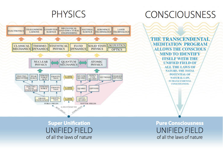 Physics/Consciousness